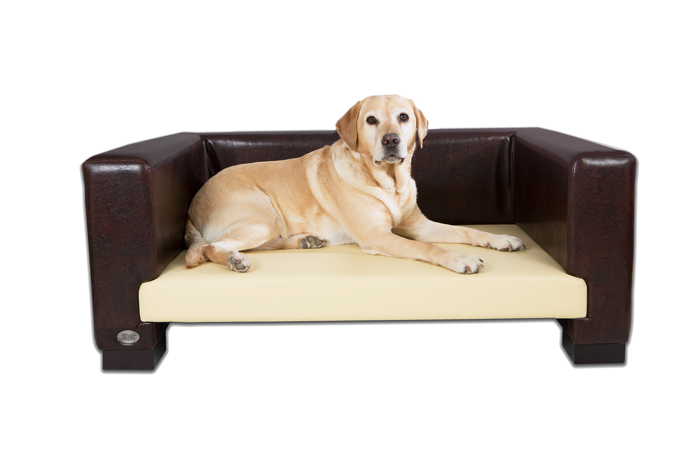 best dog sofa beds rh chelseadogs com dog sofa beds australia dog sofa beds ebay