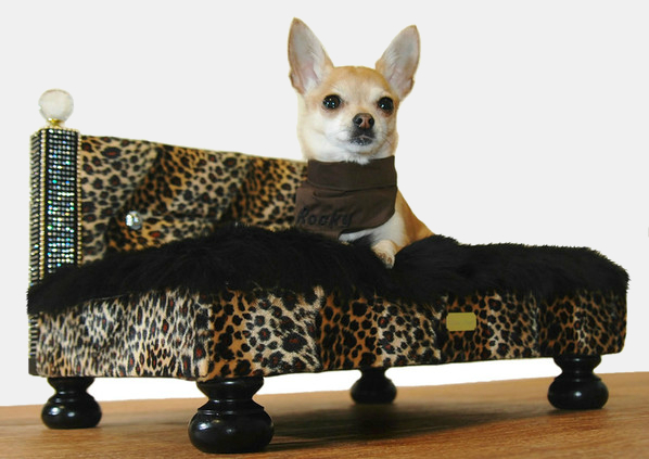 beds for chihuahuas