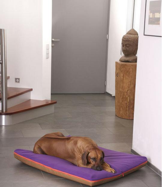 Luxury Paul Faux Leather Memory Foam Dog Bed