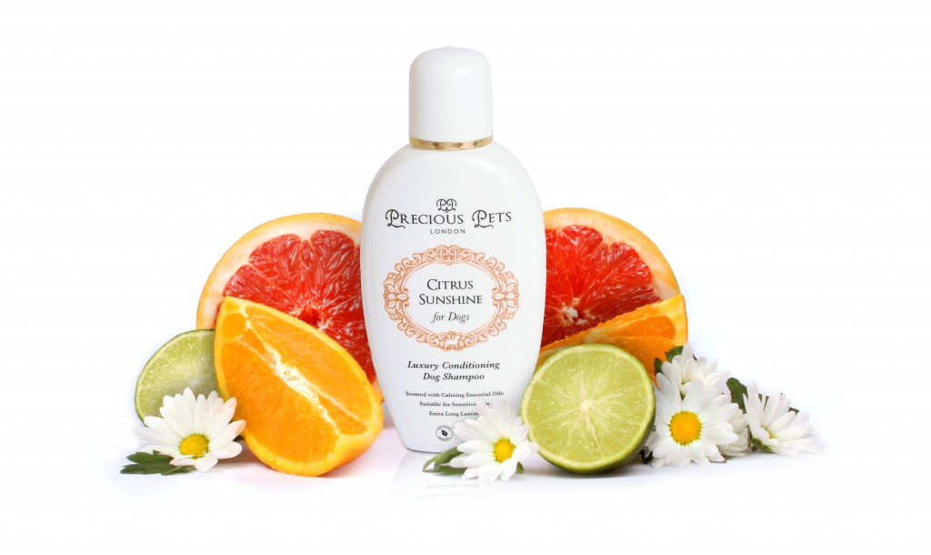 Precious Pets Citrus Sunshine Naturally Derived Dog Shampoo