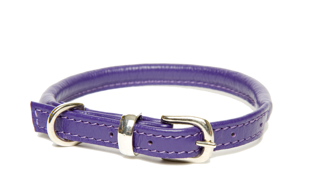 Dogs & Horses Rolled Leather Dog Collars