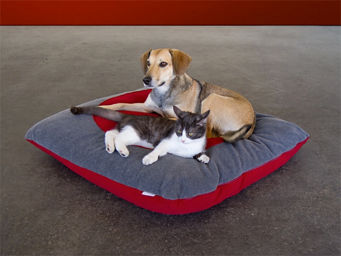 Luxury Orthopaedic Divan Dot Pet Cushion