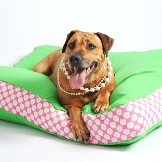 Lords & Labradors Two-Tone Refreshers Dog Beds Green and Daisy
