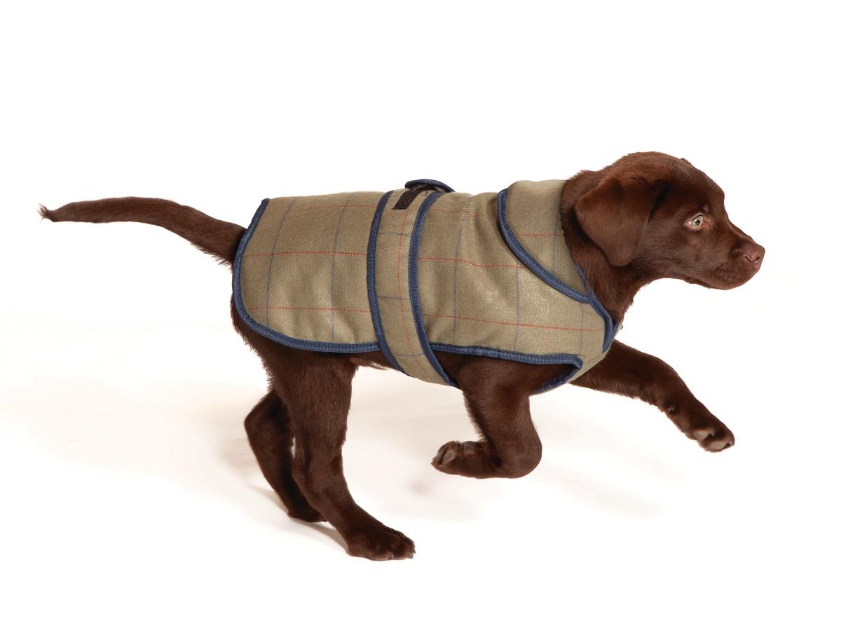 Luxury Tweed Showerproof Dog Coat