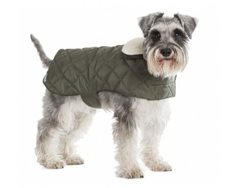 Luxury Designer Waterproof Quilted Dog Coats