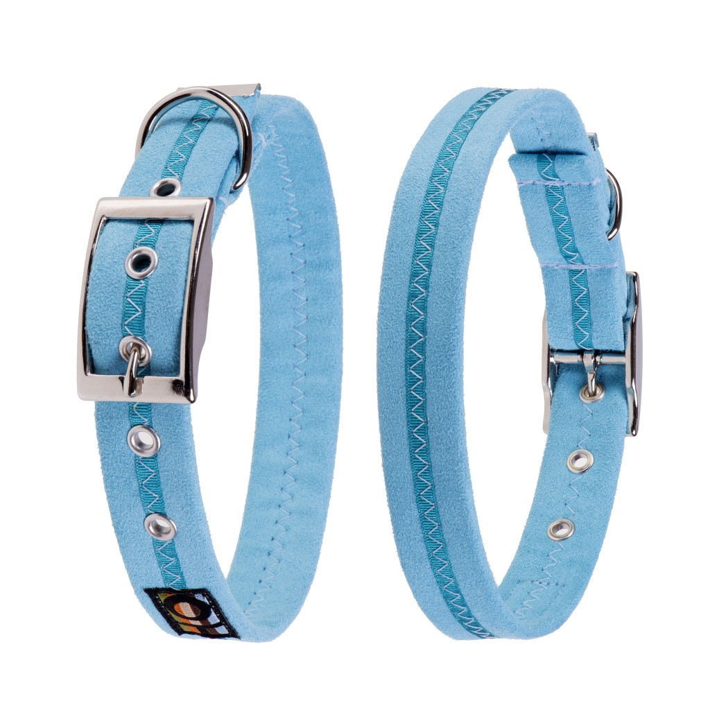 Best Collars For Labradors Oscar and Hooch Ocean Breeze