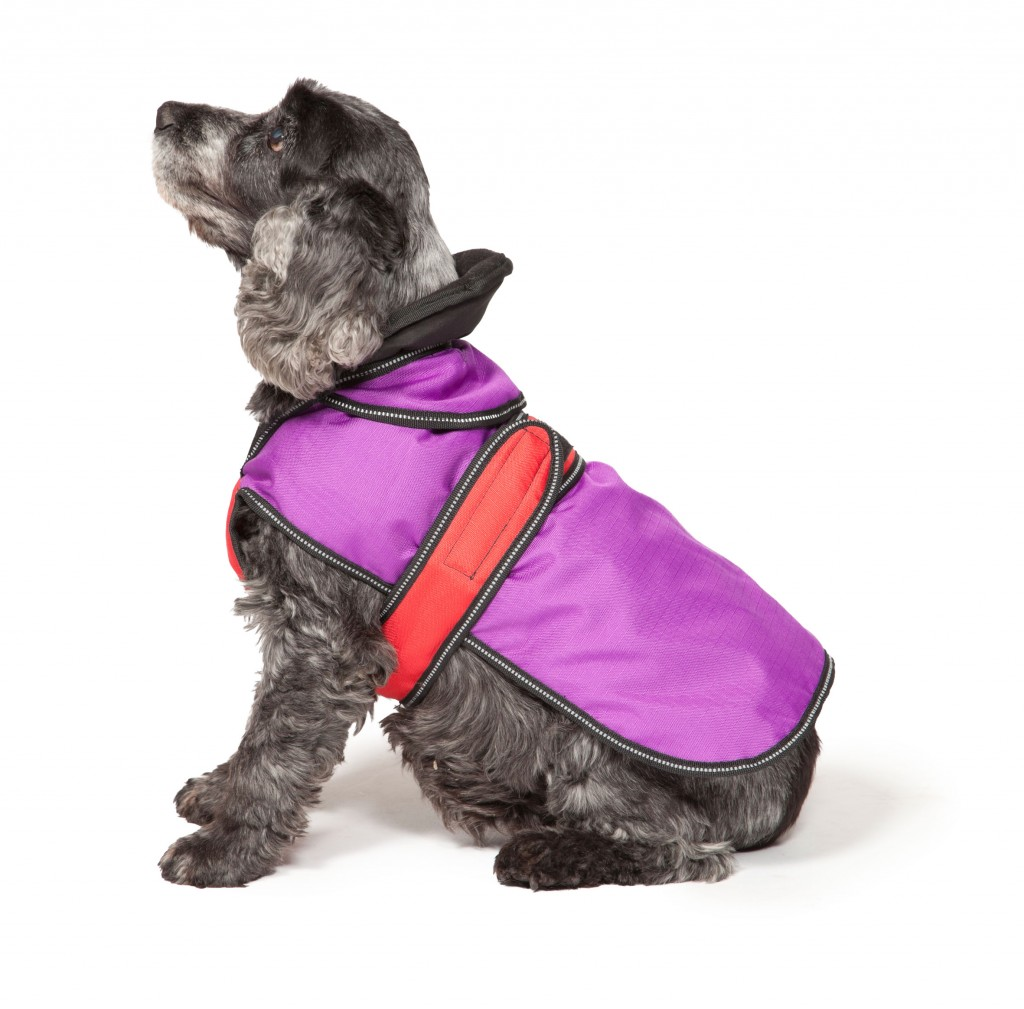 The Ultimate 2 in 1 Waterproof Dog Coat Purple And Red by Danish Design