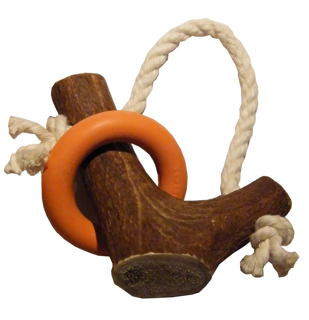 Stagbar Antler Multi Puppy Teething Toy
