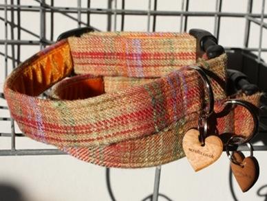 cinnabar designer dog collars for cavalier king charles spaniels