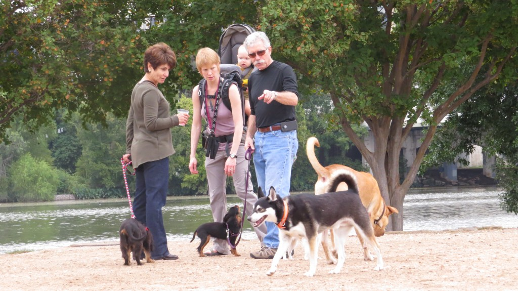 10 ways to meet other dog lovers