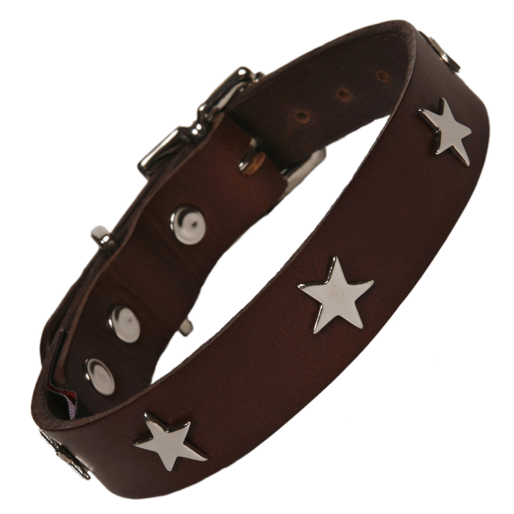 Creature Clothes Brown Leather Dog Collar With Silver Stars