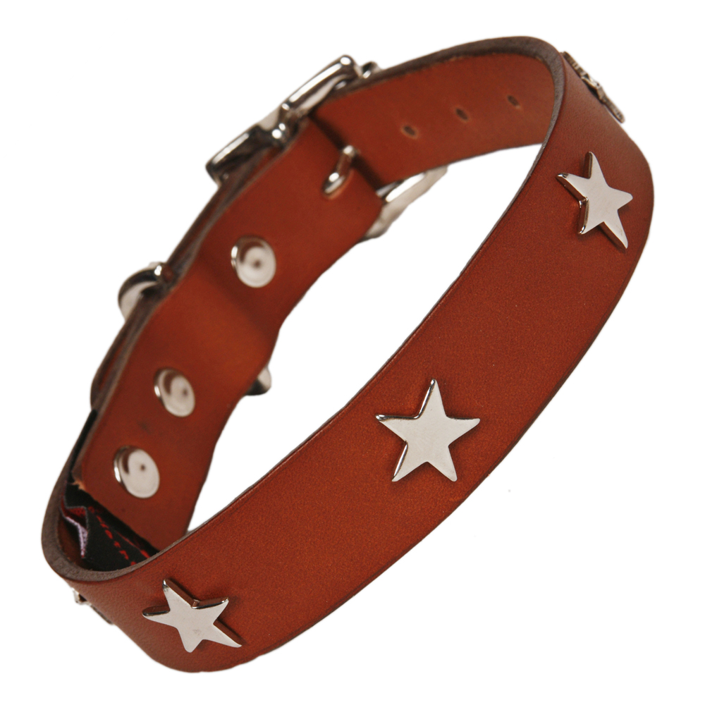 Creature Clothes Tan Leather Dog Collar With Silver Stars