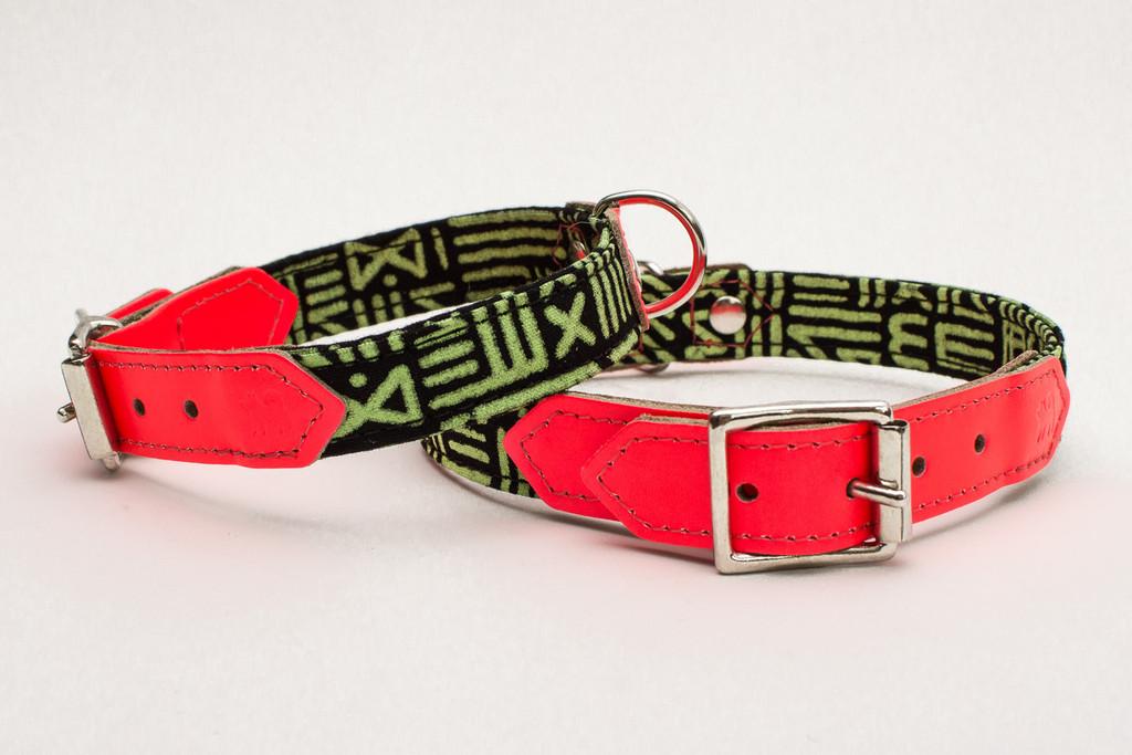 Kate Moross Orangeade Neon Dog Collar by Hiro and Wolf