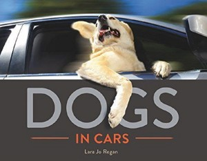 Dogs In Cars - Amazon