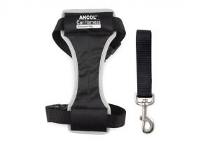 harness2