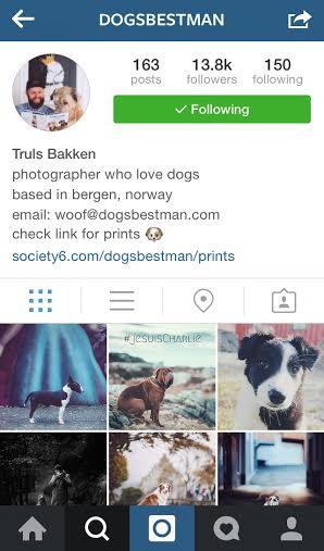 @dogsbestman Instagram