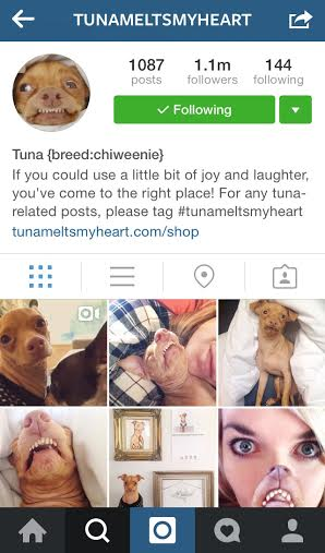 @tunameltsmyheart Instagram