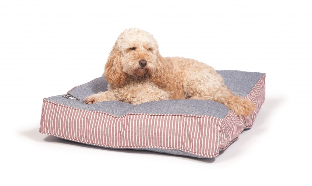 Maritime Red Box Duvet with Dog