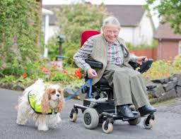DisabilityAction.org