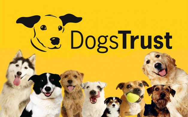 Dogs Trust Tell Parents In Wales Be Dog Smart