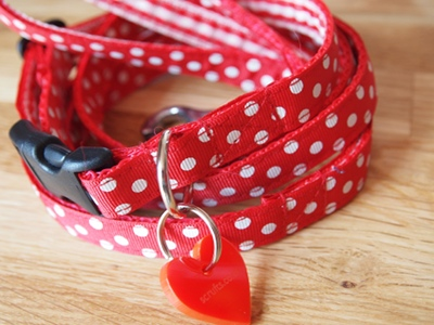 Minnie Designer Puppy Collar and Lead Sets