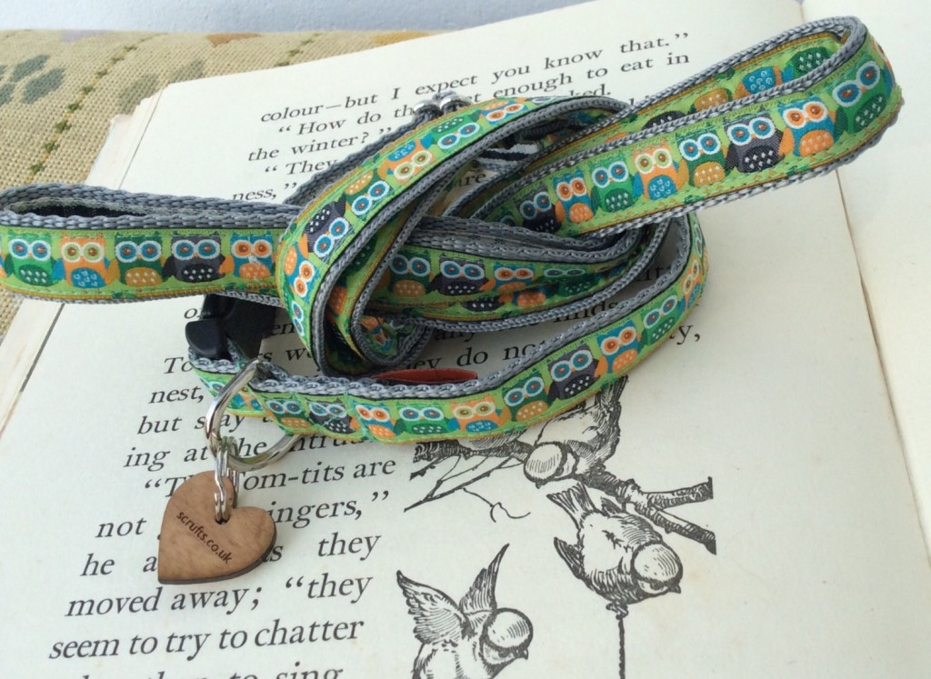 green_owls_puppy_collar_and_lead_set