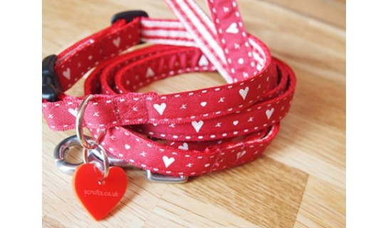 Hearts And Kisses Designer Puppy Collars and Leads Sets