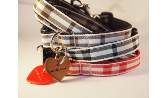 picnic_check_designer_puppy_collar_and_lead_sets