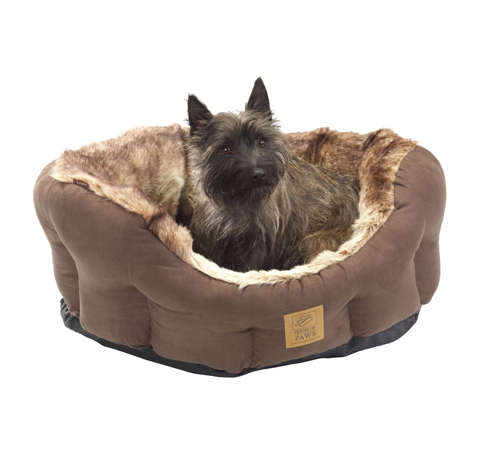 best dog beds for small breeds. Black Bedroom Furniture Sets. Home Design Ideas