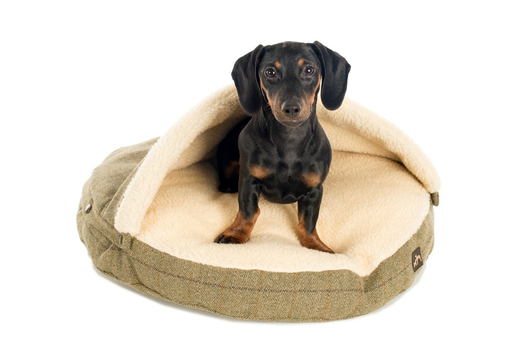 Country and Twee Tweed Cave Dog Bed