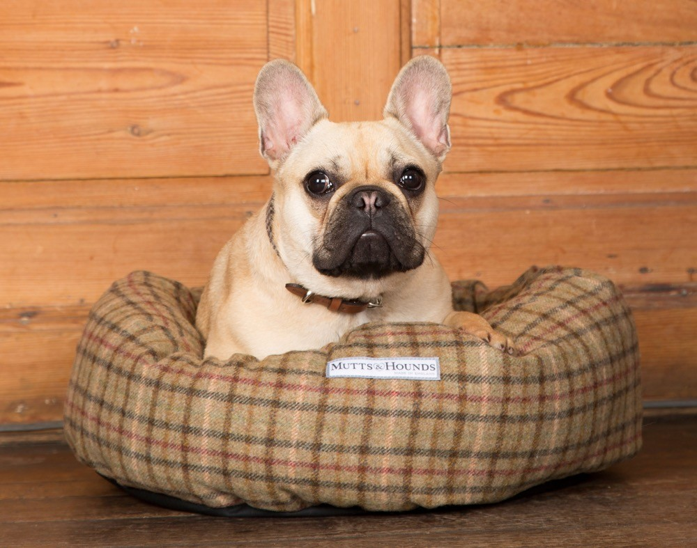 Mutts and Hounds Balmoral Check Tweed Donut Dog Bed