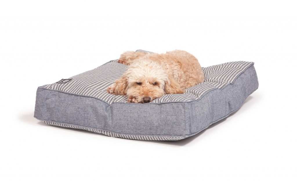 maritime_blue_box_duvet_with_dog_4