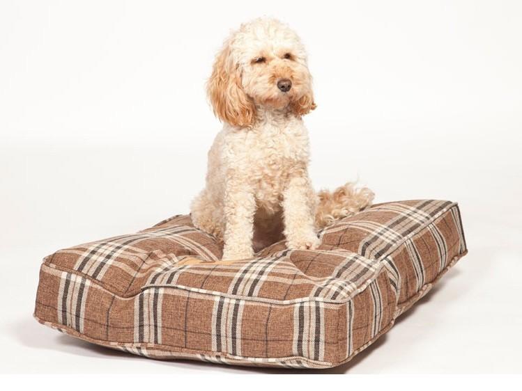 newton_truffle_box_duvet_with_dog