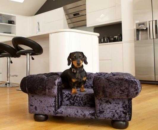 scotts_of_london_balmoral_dog_bed_chesterfield_ebony_crushed_velvet_2_5