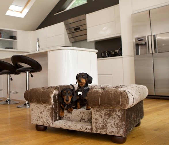 scotts_of_london_balmoral_dog_bed_chesterfield_truffle_crushed_velvet_7_1