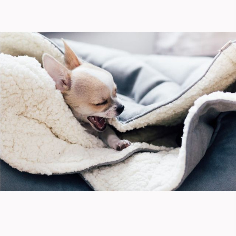 Dreamy-Silver-Dog-Bed_1024x1024