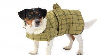 Green Tweed Dog Coat by House of Paws
