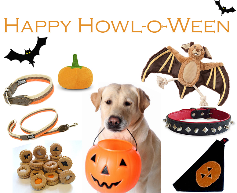 Halloween Dog Treats, Toys and Accessories at Chelsea Dogs