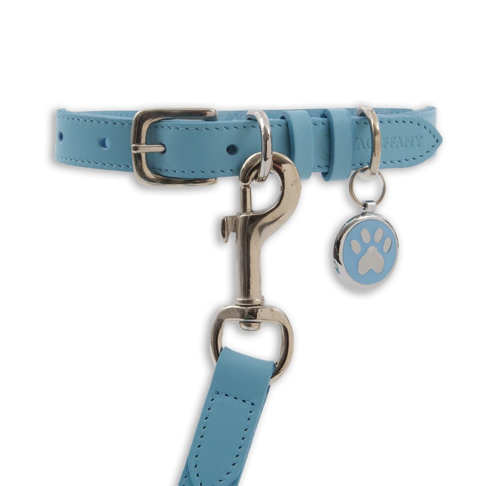 Kensington Classic Leather Dog Collars Pastel Blue by Tagiffany
