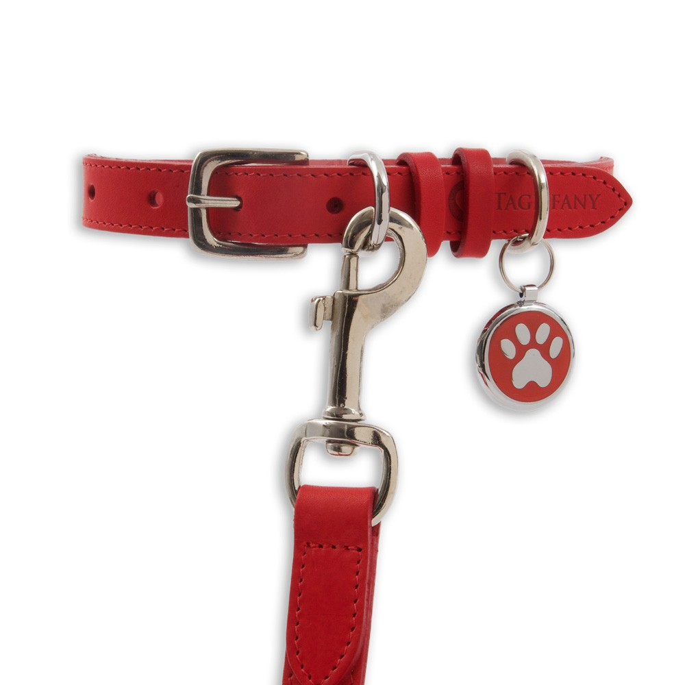 Kensington Classic Leather Dog Collars Red by Tagiffany