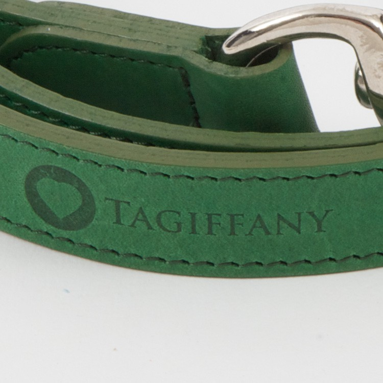 Kensington Classic Leather Dog Leads Green by Tagiffany