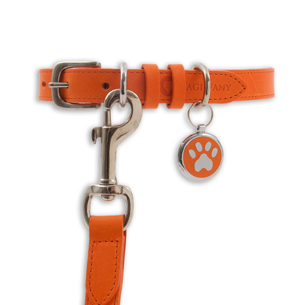 Kensington Contemporary Leather Dog Collars and Leads Orange by Tagiffany