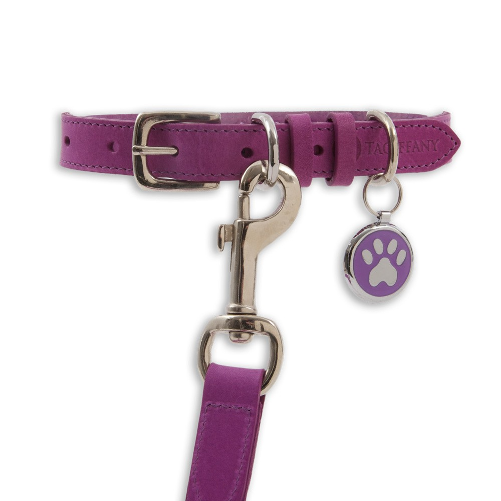 Kensington Contemporary Leather Dog Collars Purple by Tagiffany