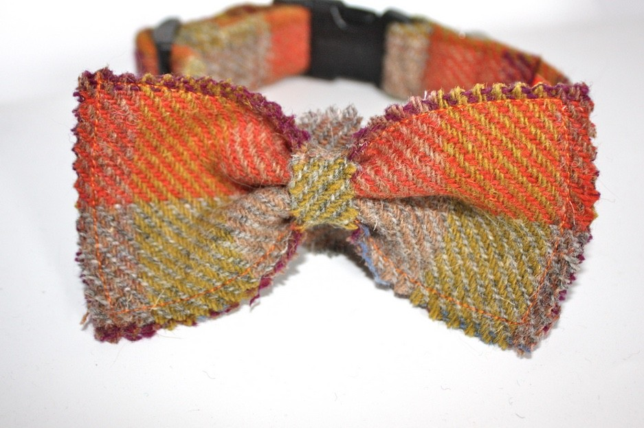 Orange Harris Tweed Bow Tie Dog Collar