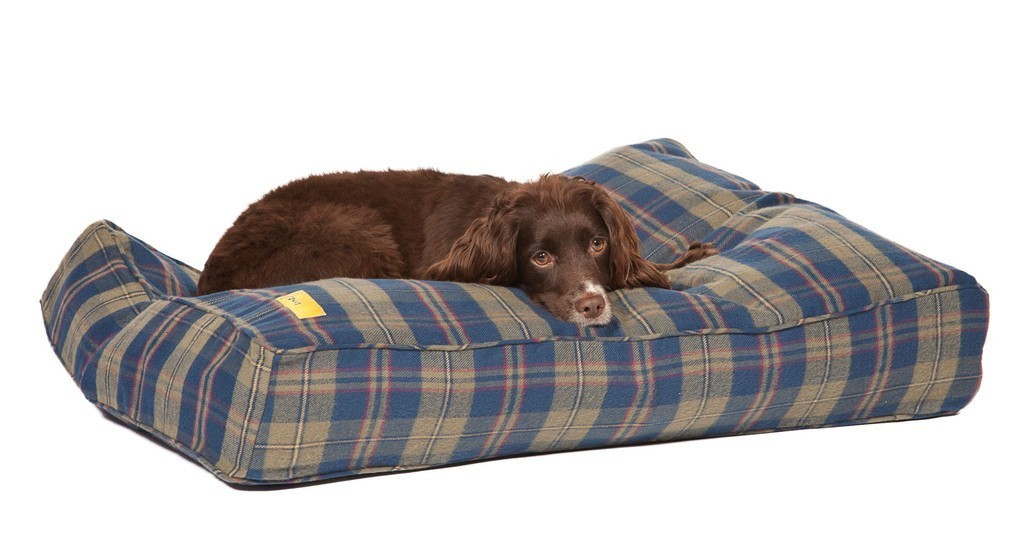 Joules Sale Dog Beds