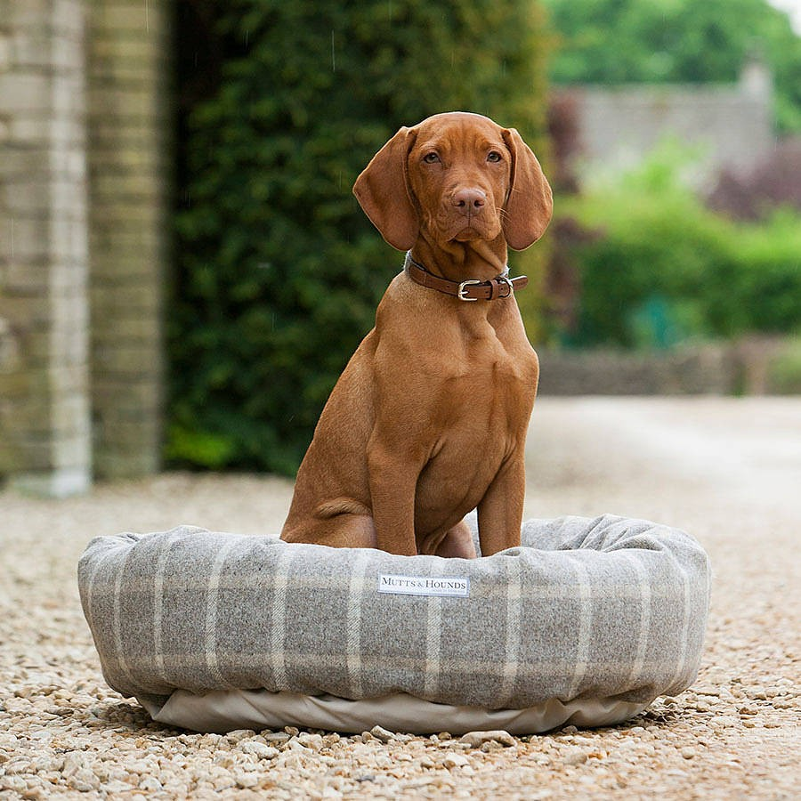 Mutts and Hounds Luxury Slate Tweed Donut Dog Beds