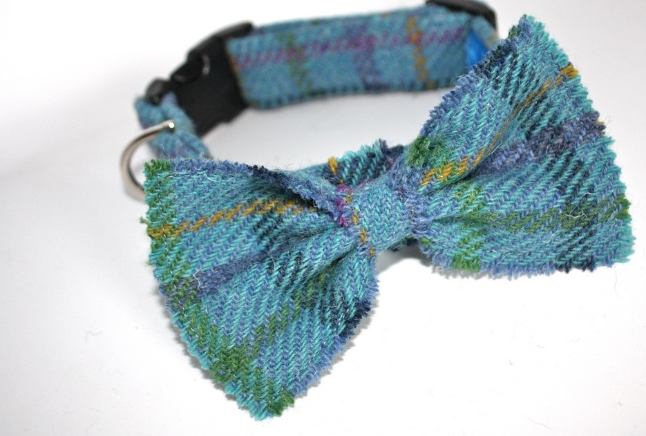 Sea Blue Harris Tweed Bow Tie Dog Collars