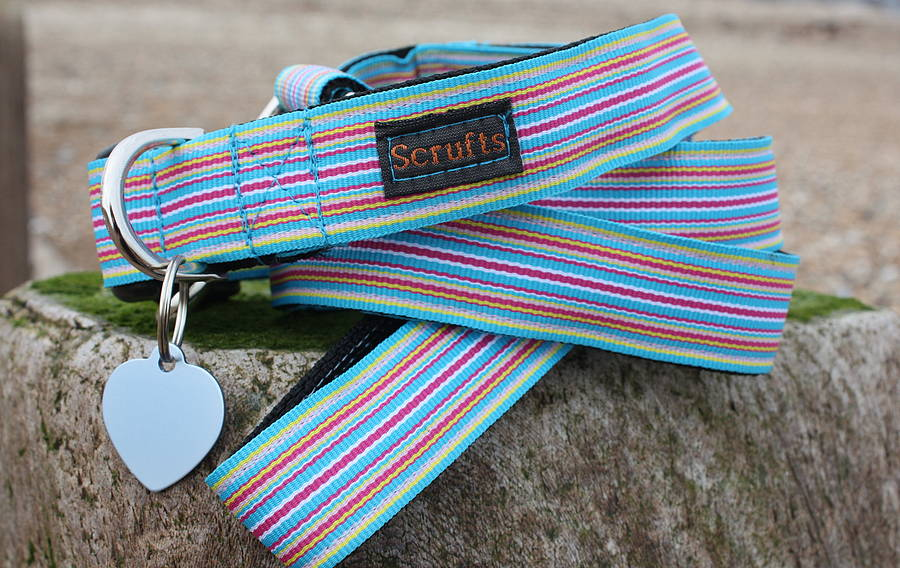 Sidmouth Blue Striped Dog Collar and Lead Set by Scrufts