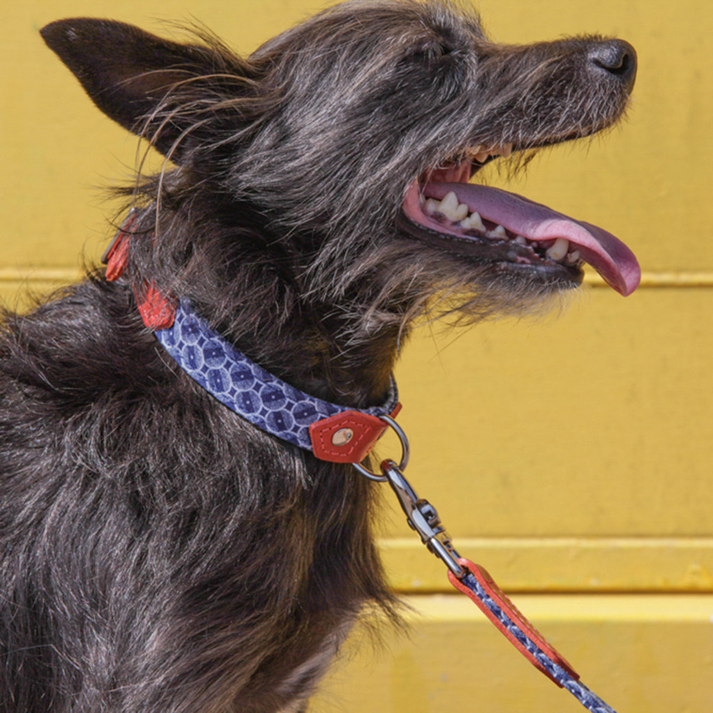 Hiro And Wolf Shweshswe Navy Circles Dog Collar