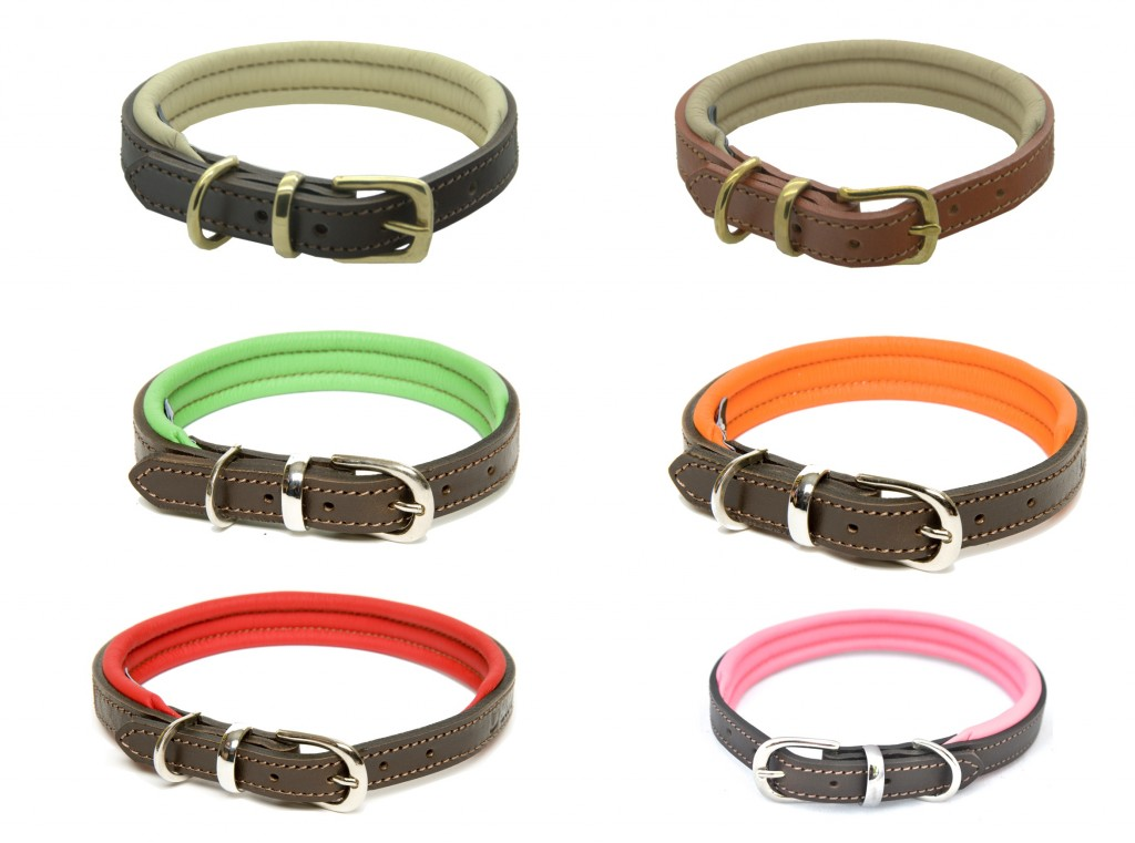 Dogs and Horses padded leather dog collars uk
